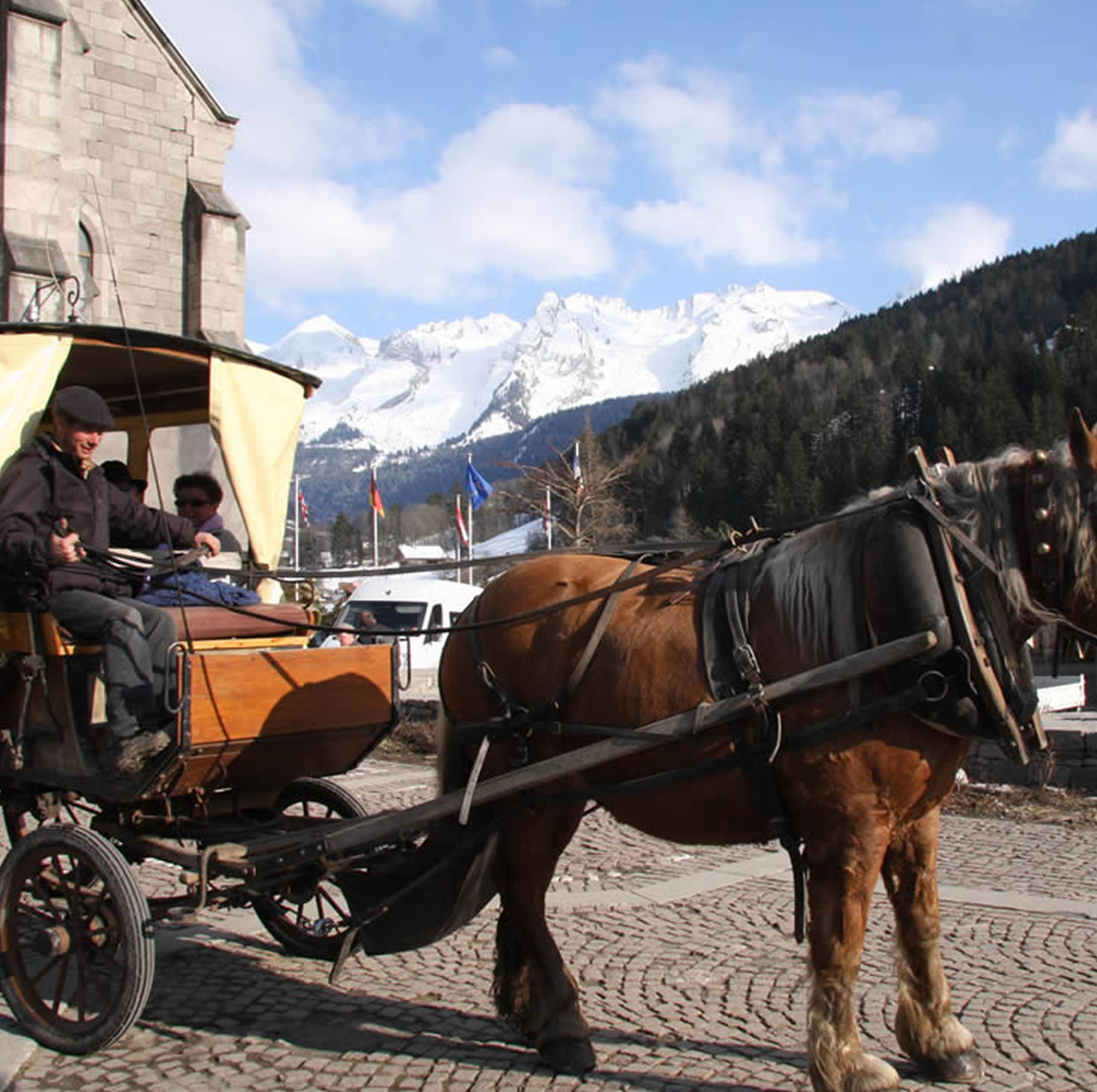 Horse-drawn carriage and sledges - Trapline Dogs