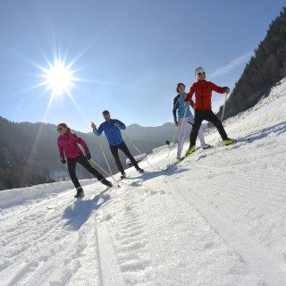 Cross-country ski lessons