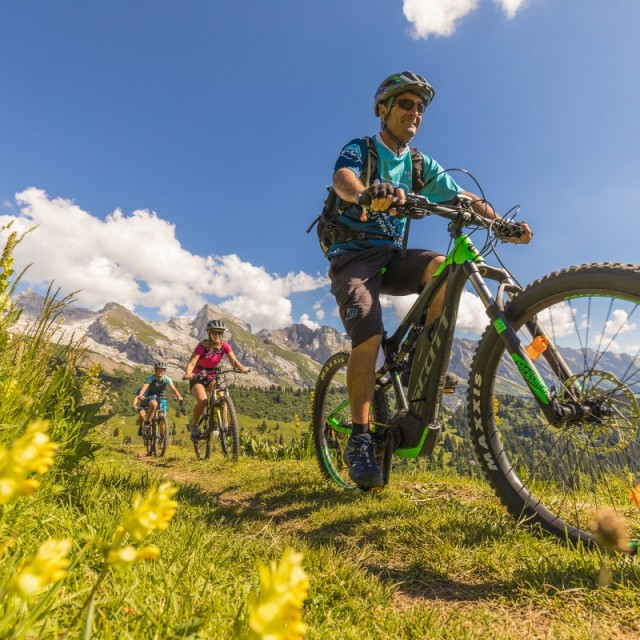 Bicycle and mountain bike rental