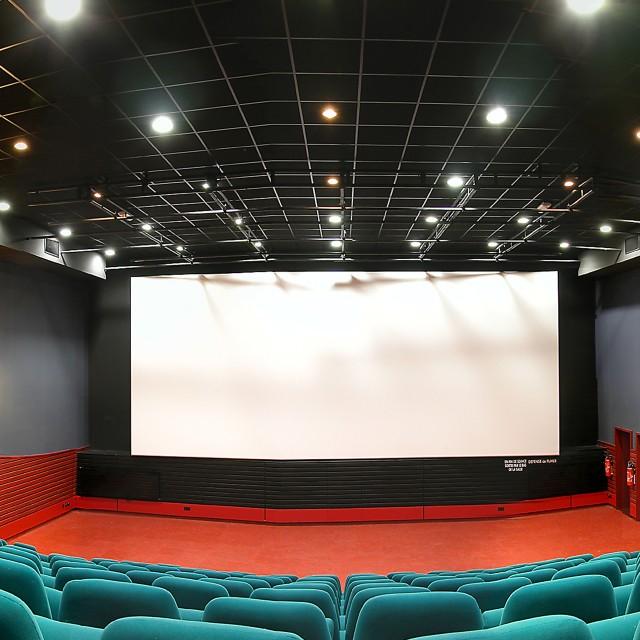 Cinemas programme