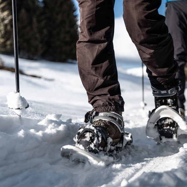 Snowshoe trails