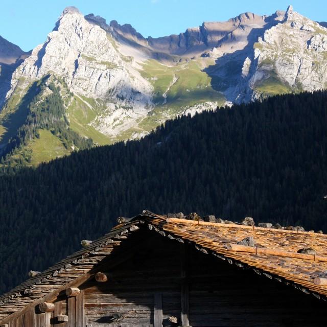 La vallée du Bouchet