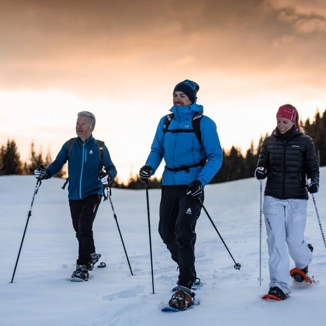 Accompanied snowshoe hikes
