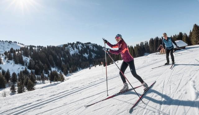 ski-fond-widget-6117