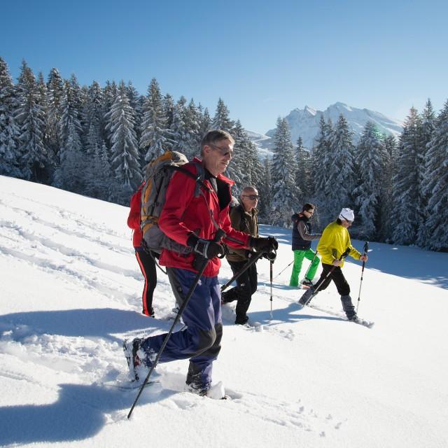 Walking trails in winter