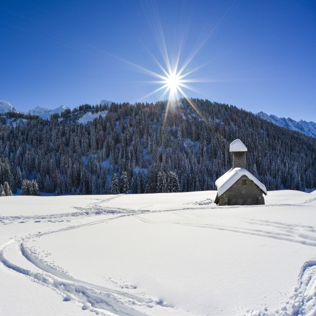 Weather and snow report