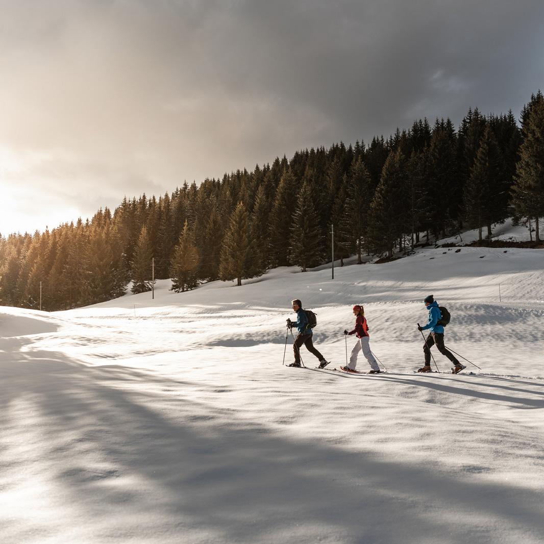 raquettes-randonnée-balade-legrandbornand-neige - © C. Hudry