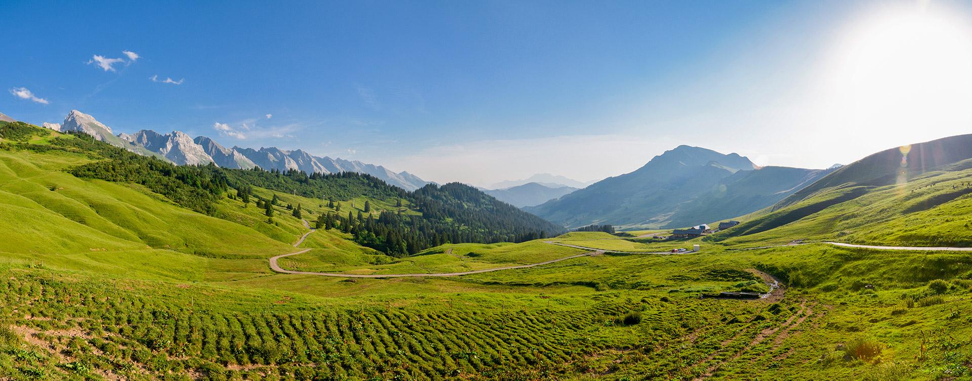 e15-dsc6311-dsc6316-paysages-d-machet-le-grand-bornand-231716 - © © D. Machet