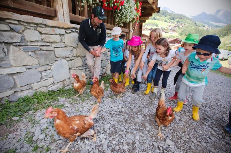 Atelier p'tits fermiers - poules